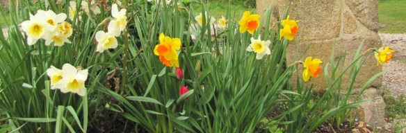 Spring Garden - Les Trauchandieres