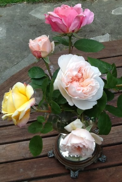 Roses from our garden - Les Trauchandieres